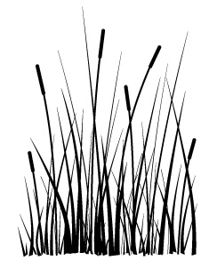 Cling - Large Cattails
