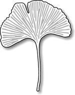 Stanzschablone Gingko Leaf