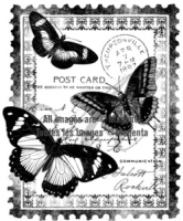 Cling - Papillon Postcard