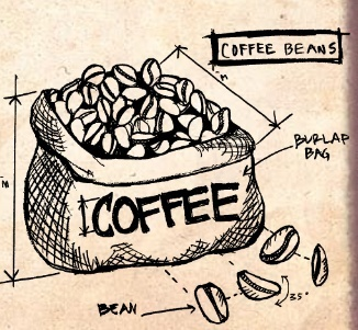Coffee Beans Sketch