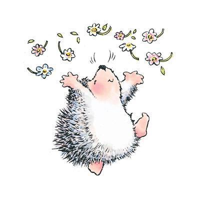 Hedgehog Joy