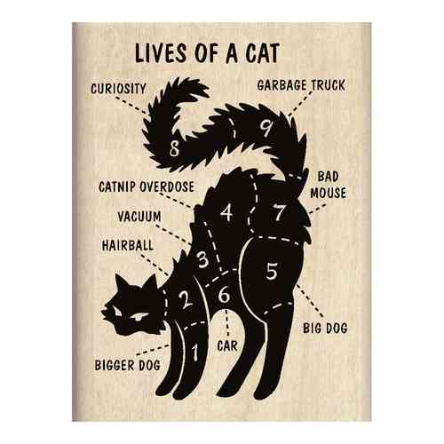 Lives of a Cat