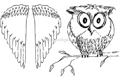 Owl with Wings