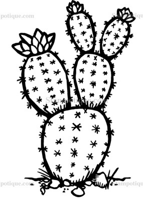 Prickley Pear Cactus