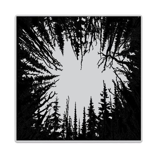 Cling - Cathedral of Trees Bold Prints